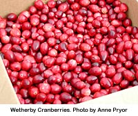 Click on the photo for cranberry recipes!